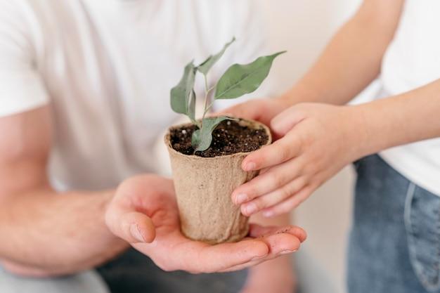植物のポットを保持しているお父さんと息子