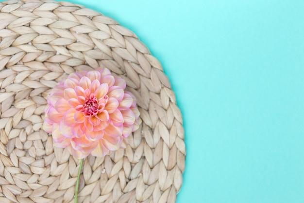 Салфетка ручной работы из розового цветка георгина и водного гиацинта на синем бумажном фоне