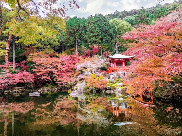 明るい青空の背景に池とdai寺のカエデの木の美しく、マルチカラー