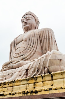 Daibutsu, the great buddha statue in meditation posenear mahabodhi temple.
