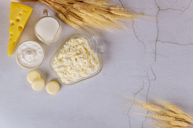 Dairy products on white surface with wheat