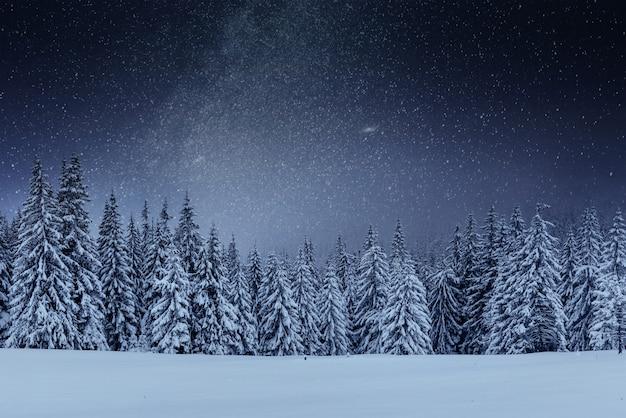 Молочный звездный путь в зимнем лесу. драматическая и живописная сцена. в ожидании праздника. карпатская украина