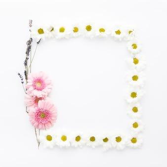 デイジーとフィールドの花のフレーム