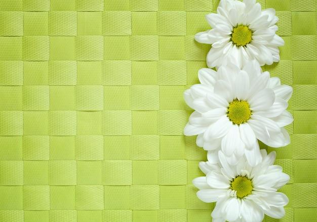 緑の市松模様のテーブルクロスにデイジーライン、フラットレイ