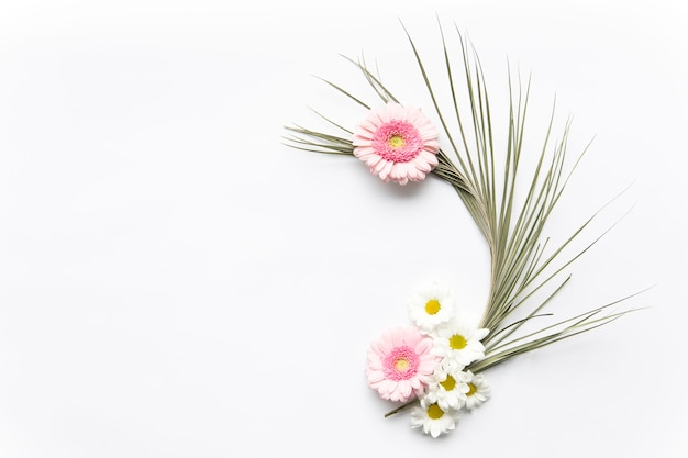 Daisies on palm leaf