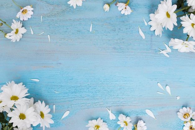 Daisies on wooden shabby surface