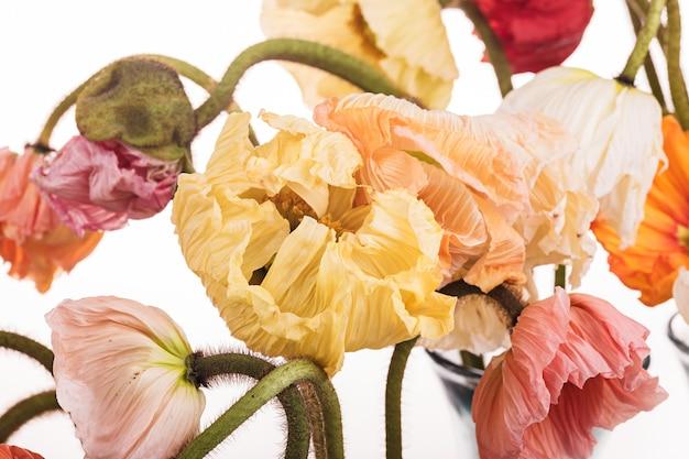 デイジーとケシの花のブーケ