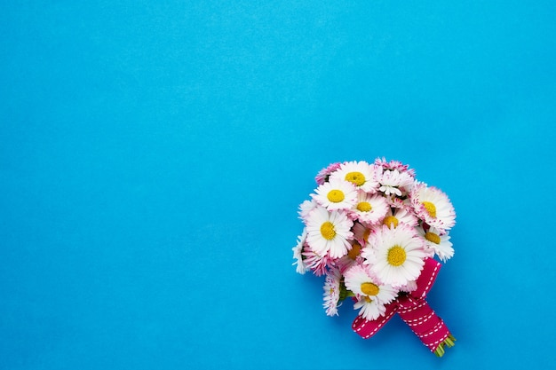 Daisy bouquet on bright blue background.