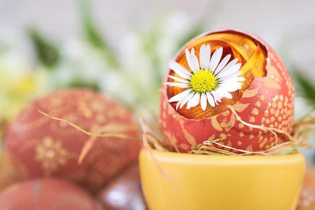 Daisy flower in cracked easter egg  on abstract springtime