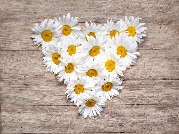 木製の背景にハートの形をしたデイジーの花