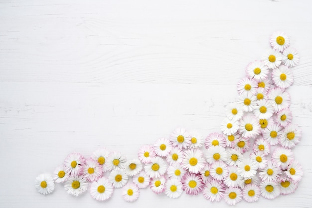 Daisy flowers on white wooden background.