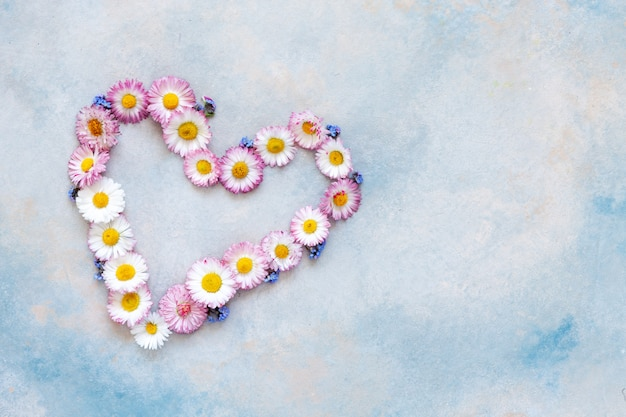 Daisy and forget-me-not heart shape pattern on the sky blue background