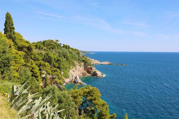 Побережье далмации с зелеными лесными деревьями природы с синим адриатическим морем, хорватия, европа