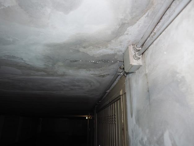 水の浸透の滴による天井の湿気の湿気