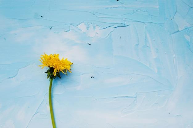 青色の背景にタンポポの花