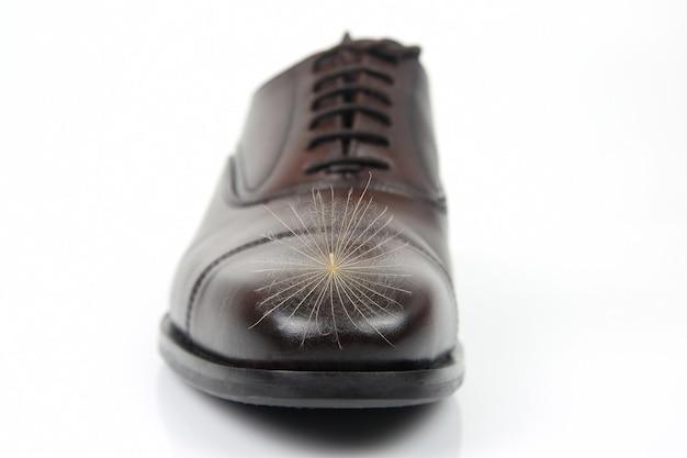 클래식 남성 신발의 발가락에 민들레 씨앗