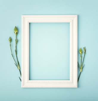 Dandelion stems with copy space empty frame