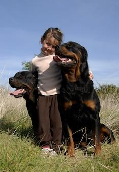 Опасные собаки и ребенок