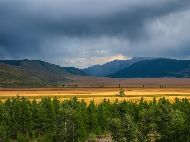 高地の草原のある暗い大気の風景。低い雲に囲まれた山々と明るい金色の野原。山の美しい曇り雨の天気。