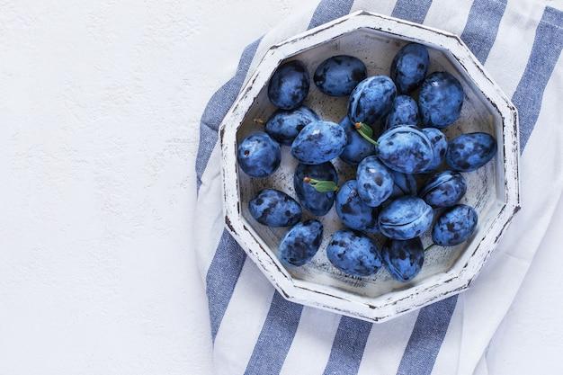 흰색 배경에 흰색 트레이에 진한 파란색 매화