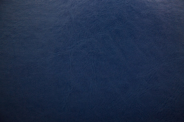 Dark blue textured leather background.