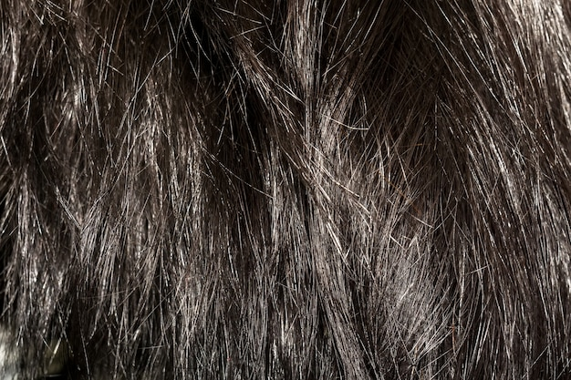 Dark brown hair texture