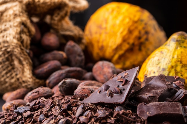 Dark chocolate pieces crushed and cocoa beans, top view