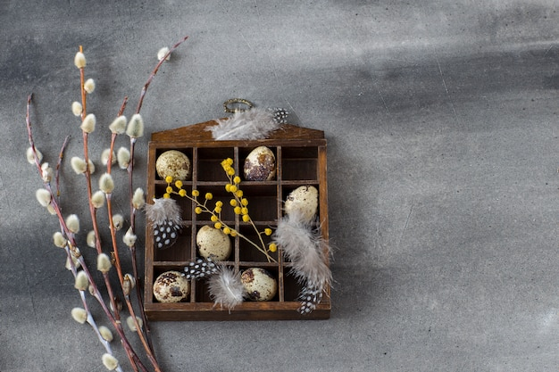 On a dark gray background box with quail eggs, feathers and willow