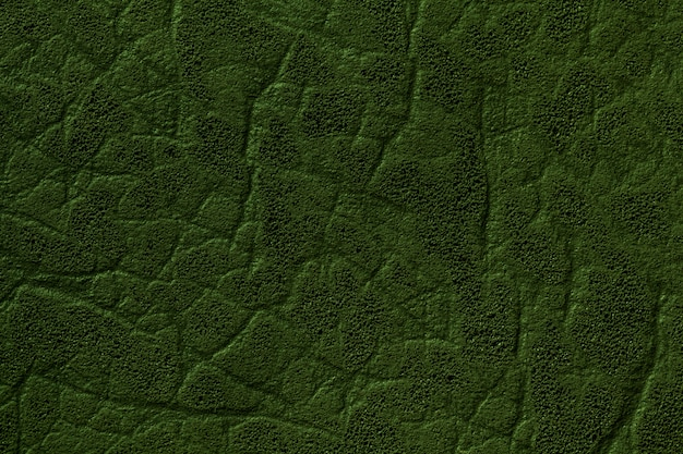 Dark green artificial leather background with texture and pattern, closeup