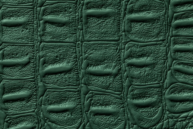 Dark green leather texture background, reptile skin