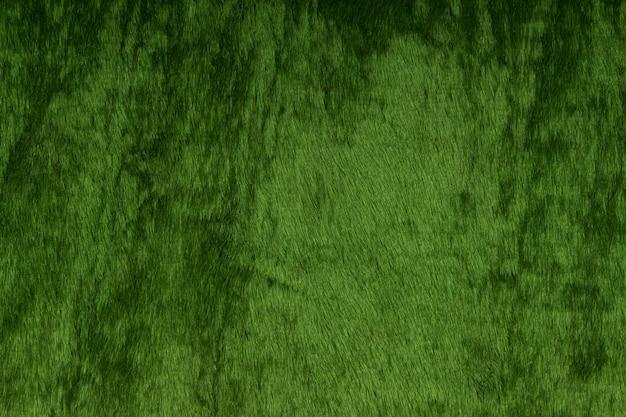 ダークグリーンのベルベットのテクスチャ。