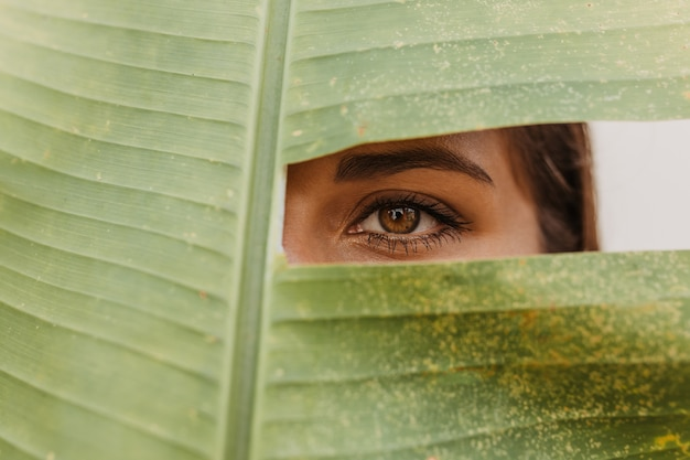 Dark-haired woman with green eyes looking into front through hole in huge leaf