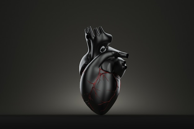Dark human heart. 3d illustration. contains clipping path