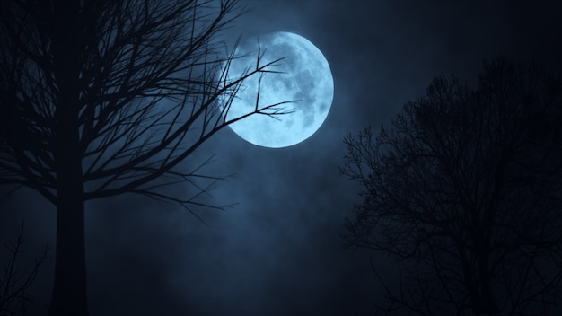 Dark night forest against full moon 3d illustration