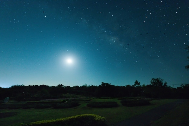 Dark night with full moon, landscape and green garden with sky at night for nice camping