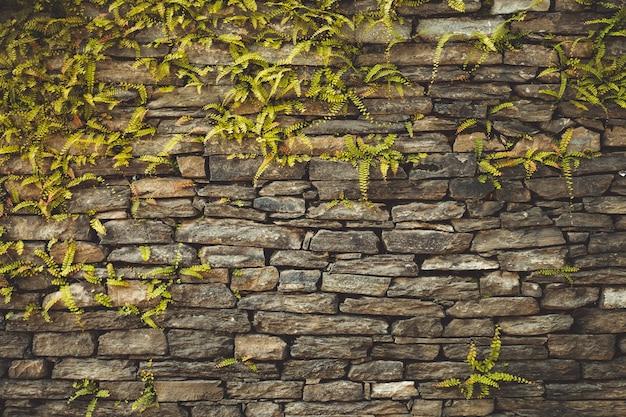 Dark old brown stone wall background