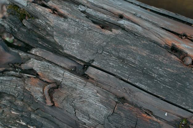 Темная текстура старого дерева или фон крупным планом