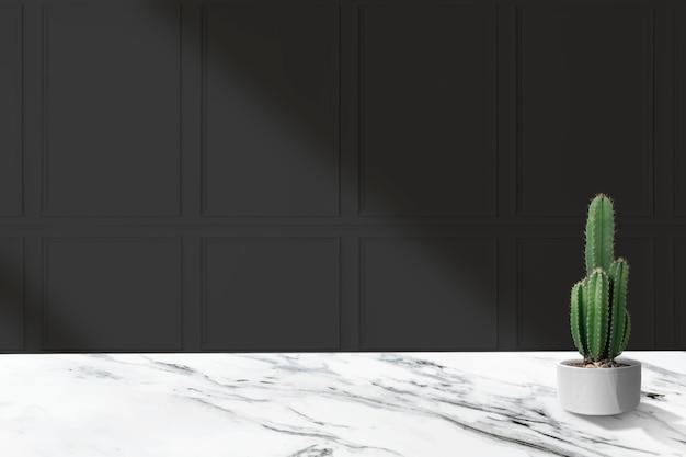 暗い製品の背景、黒い壁とサボテン