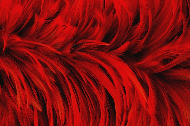 Dark red feather wing pattern texture for background and design art work.