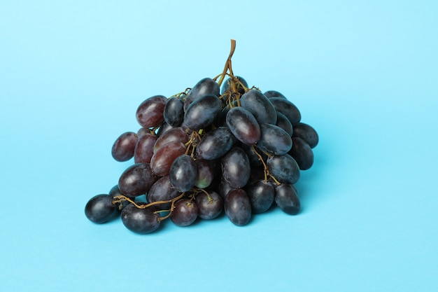 Dark ripe grape on blue background, close up