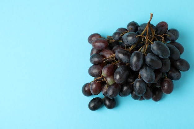 Dark ripe grape on blue background, space for text