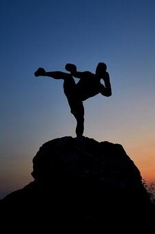 Dark silhouette of a muscular boxer making high kick