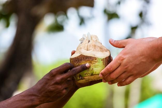 Dark-skinned hand white man, white and black man, coconut in hands