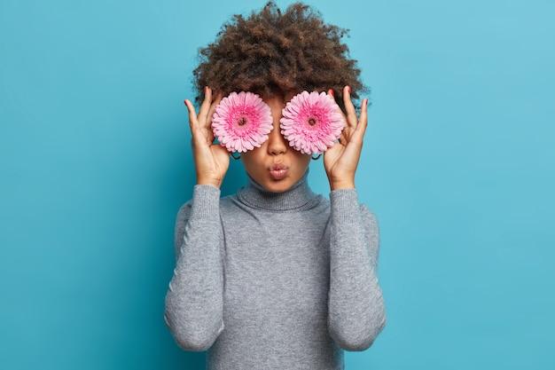 어두운 피부의 젊은 여성이 아름다운 장미 빛 거베라 데이지로 눈을 가리고, 좋아하는 꽃을 연주하고, 기분 좋은 향기를 즐기고, 입술을 접은 상태를 유지합니다.