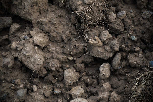 Dark soil background