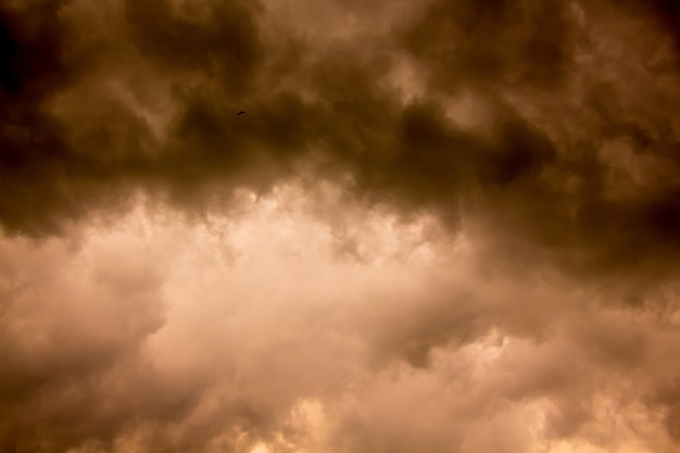 日没時に暗い嵐の雲。自然災害