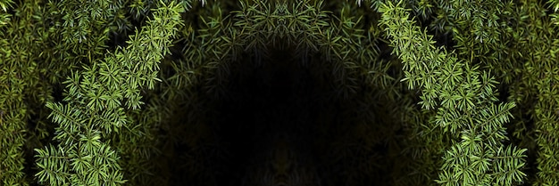 Dark tunnel in the bushes, background image