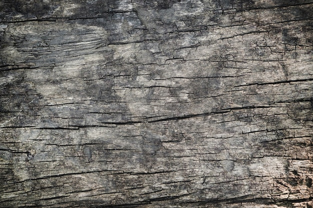 Dark wood texture surface with old natural pattern.