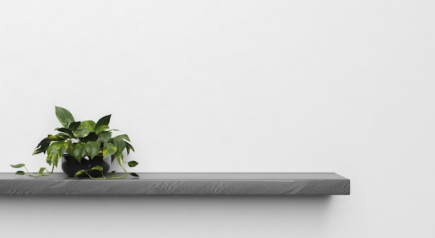 片側に植物がある暗い木製の棚