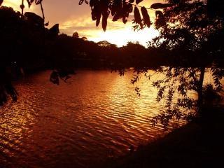 Darknes of the kandy lake